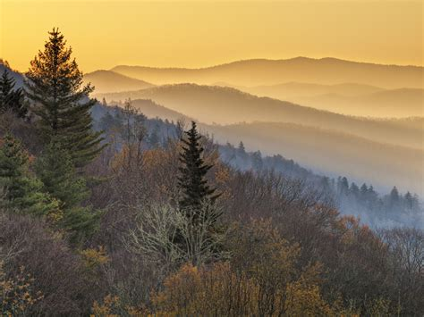 National parks in autumn: When and where to spot the best ...