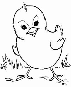 Baby Chick Coloring Pages Getcoloringpagescom