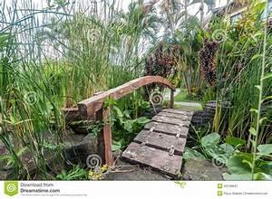 Petit Pont En Bois : petit pont en bois image stock image du centrale vert 49748847 ~ Melissatoandfro.com Idées de Décoration