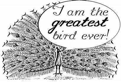 Words Hyperbole Bias Language Peacock Positive Self