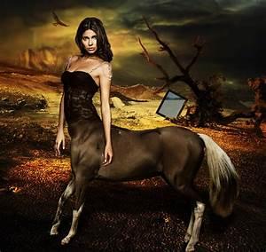 Female Centaur by blackclouds88 on DeviantArt