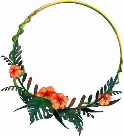 Tropical Frame Flower Round Clipart Transparent Garland