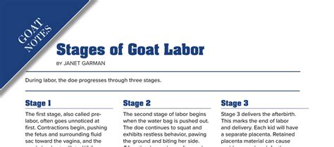 stages  goat labor backyard goats