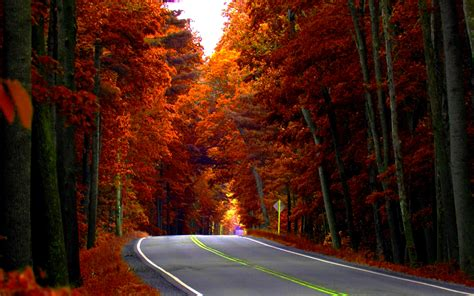 Autumn Roads Wallpapers by Autumn Road Hd Wallpaper Background Images