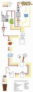 Brewing Beer At Home Infographic If You U0026 39 Re In Portland And