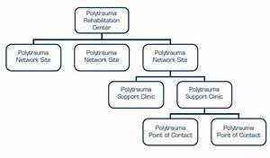 Va Polytrauma System Of Care  Tbi System Of Care
