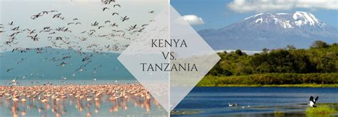 Kenya Vs Tanzania The Lowdown  Pulse Africa