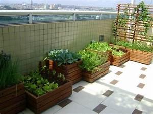 balkon pflanzen coole platzsparende ideen With französischer balkon mit ausgefallene pflanzen garten