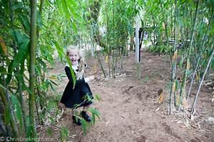 Ian Potter Children's WILD PLAY Garden, Centennial Park ...