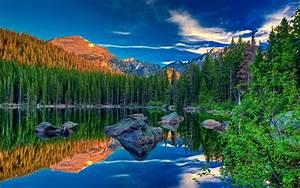 Amazing Pine Forest Lake Rocks Wallpapers Amazing Pine