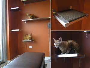 diy cat shelves keaton and scoochie build their own diy cat climbing