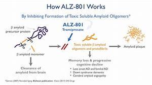 How ALZ-801 Works - Alzheon | Preserving Future Memories