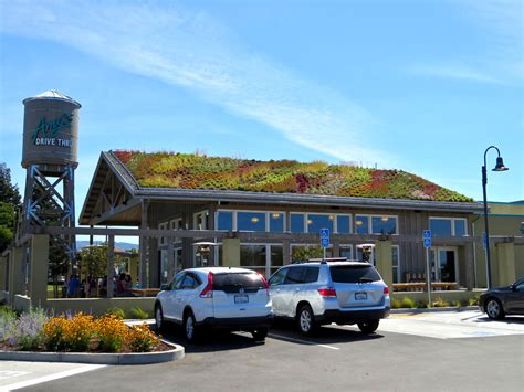 amys drive  restaurant greenroofscom