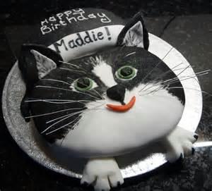 cat birthday cake cat birthday cake to match pets photo wedding birthday