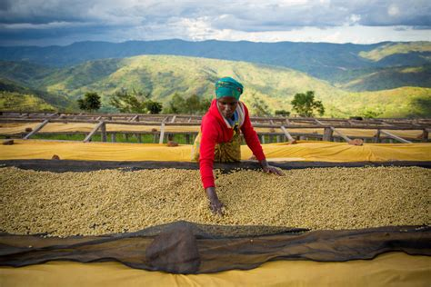 Learn more about starbucks coffee culture. Starbucks Reserve® Rwanda Hingakawa