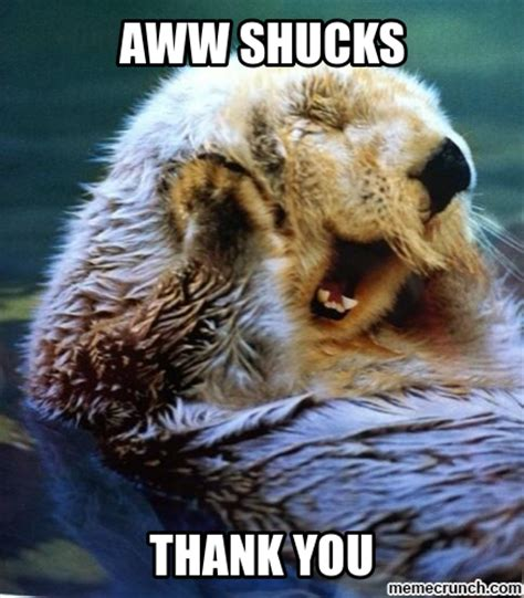 Aww Thank You Meme - aww shucks