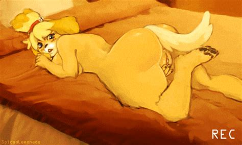Animation Isabelle By Spicedlemonade Hentai Foundry