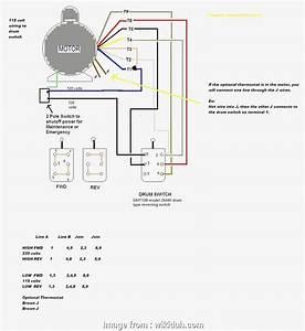 15 Professional Baldor Motor Wiring Diagrams Single Phase