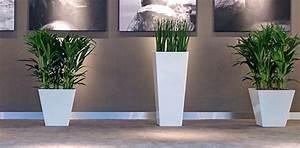Plante De Salon : plantes d interieur salon l 39 atelier des fleurs ~ Teatrodelosmanantiales.com Idées de Décoration
