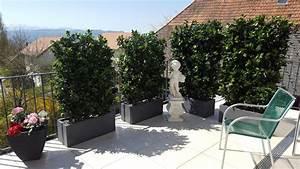 Kunstblumen Für Balkon : winterharte hecken mit k bel premium kunstpflanzen ~ A.2002-acura-tl-radio.info Haus und Dekorationen