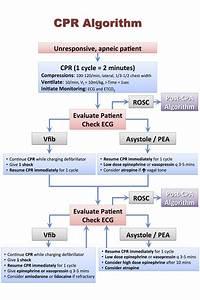 Veterinary Emergency Drug Calculator