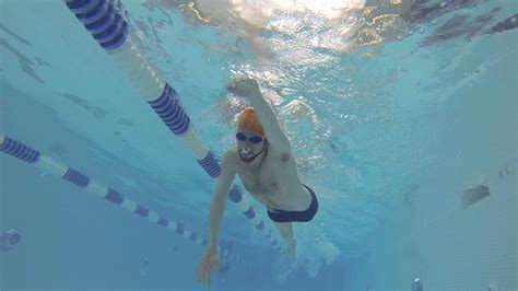 swim laps swimming lessons youtube