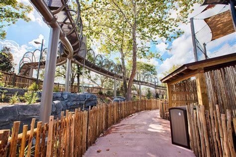 zoo exhibit jacksonville forest african nassal