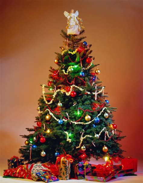 christmas tree decorationquotes trees tree decorations happy birthday wishes quotes cakes messages sms