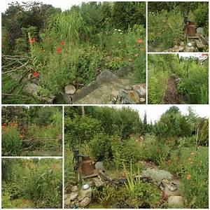Garten Mohn Sorten : bild 1 aus beitrag sonntagsbilder 29 juni 2014 garten ~ Michelbontemps.com Haus und Dekorationen