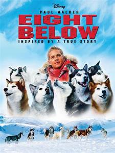 Eight Below (2006) - Rotten Tomatoes