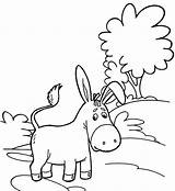 Donkey Coloring Cartoon Detailed Pages Funny Twelve Children sketch template