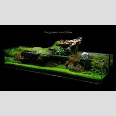 Aquascape Tutorial Simplicity By James Findley  How To