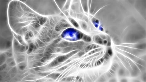 3d Wallpapers Pictures by 4k Wallpaper Of 3d Cat Hd Wallpapers