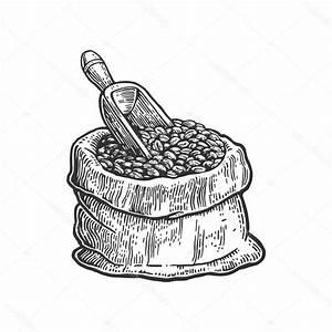 Coffee Bean Drawing At Getdrawings