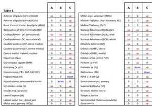 Typical and Atypical Antipsychotics Medications List