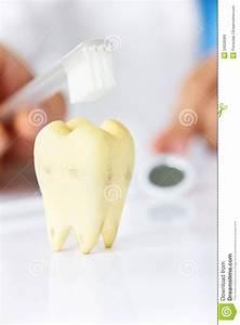 Dental Hygiene Concept Stock Photo - Image: 34028980