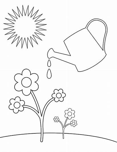 Coloring Watering Plants Pages Spring Plant Drawing