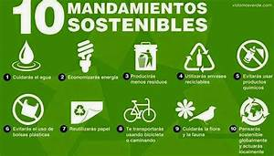 frases del dia Medio Ambiente