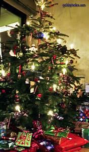 Schleifen Für Weihnachtsbaum : weihnachtsbaum christbaum tannenbaum weihnachten ~ Whattoseeinmadrid.com Haus und Dekorationen