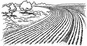 Farm Field Clipart - Clipart Suggest
