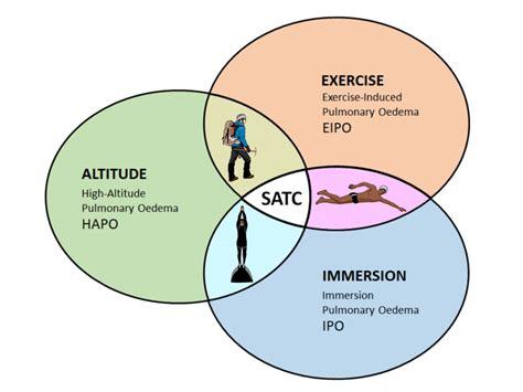 Schematic representation of external stimuli for the development of...   Download Scientific Diagram