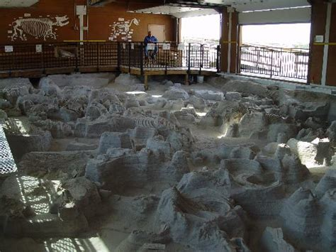 ashfall fossil beds state historical park ashfall fossil beds state historical park