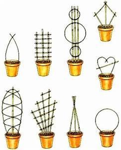 Pflege Von Zimmerpflanzen : aufbinden pflege von zimmerpflanzen zimmerpflanzen zimmer und gartenblumen ~ Markanthonyermac.com Haus und Dekorationen