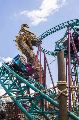 busch gardens new roller coaster a definitive ranking of busch gardens ta s roller