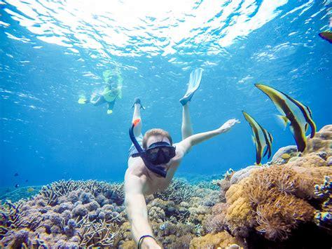 manta ray snorkeling on nusa lembongan bold travel