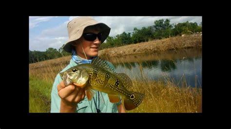 florida fishing south canals peacock bass