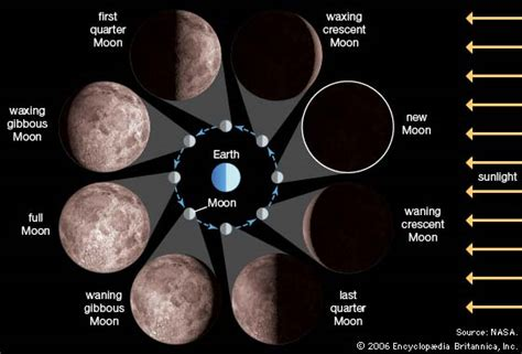 Moon Phases Diagram Kids