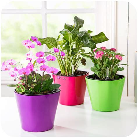 creative auto arrosage pots succulentes pots en plastique pot de fleur de stockage outil