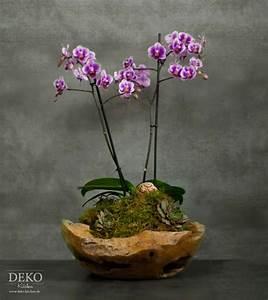Wie Oft Blumen Gießen : diy orchideen effektvoll dekorieren deko kitchen ~ Orissabook.com Haus und Dekorationen