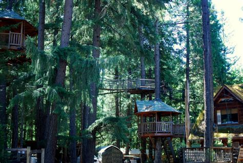 Tree House Resort Oregon - oregon treehouse resort gives an unforgettable experience